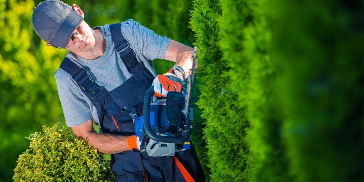 Jardinier paysagiste à La Réunion